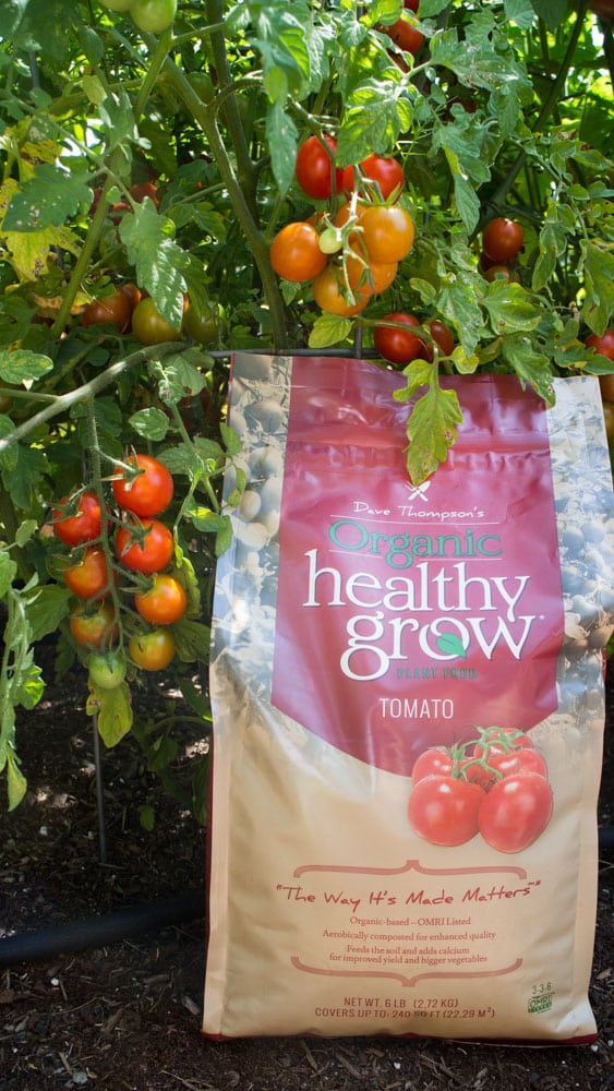 Check out the video tour of our garden! Want to see what's growing in Upstate New York?