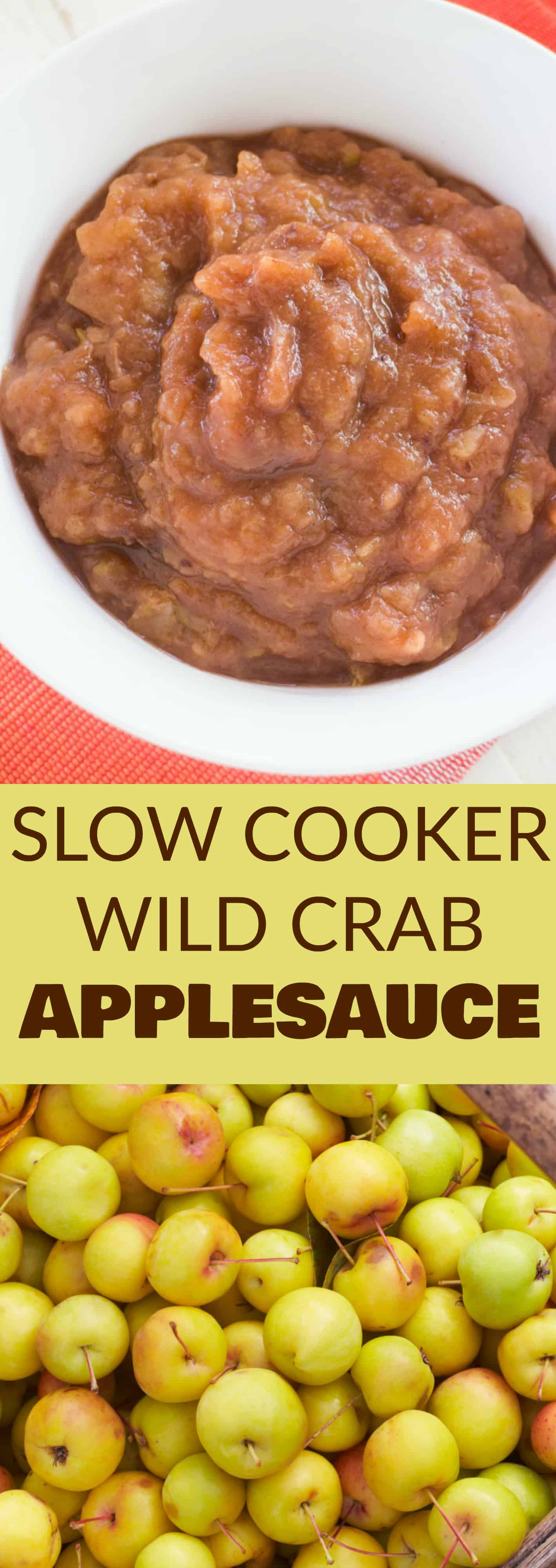 SUGAR FREE Crockpot Applesauce Recipe! It's one of the easiest slow cooker applesauce recipes that makes delicious homemade sugar free applesauce! Looking for crab apple recipes, then this is great for crab apples but you can use other apples too! I love canning this healthy applesauce recipe to last all Winter long!