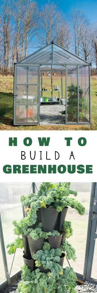 Make gardening season last year round with a greenhouse! Go green and grow your own in the Winter!