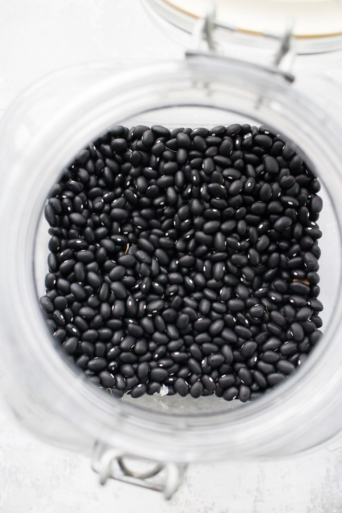 How to grow black bean plants from seeds in your vegetable garden. Looking for a new plant to grow in your garden this year? Try growing black beans! They're easy to grow, produce a good yield and store great for recipes!
