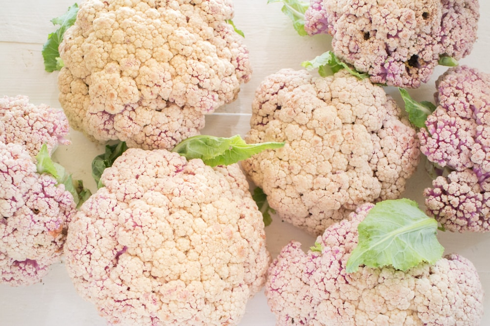 After years of failing at growing cauliflower we switched to a new variety and grew over 20 pounds of cauliflower! Learn how we grow cauliflower from seeds that can withstand Summer heat and result in a big cauliflower harvest!