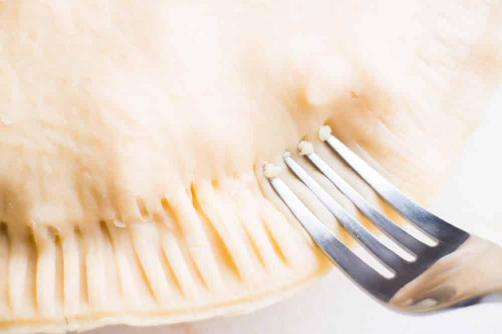 Fork Piercing Pie Crust