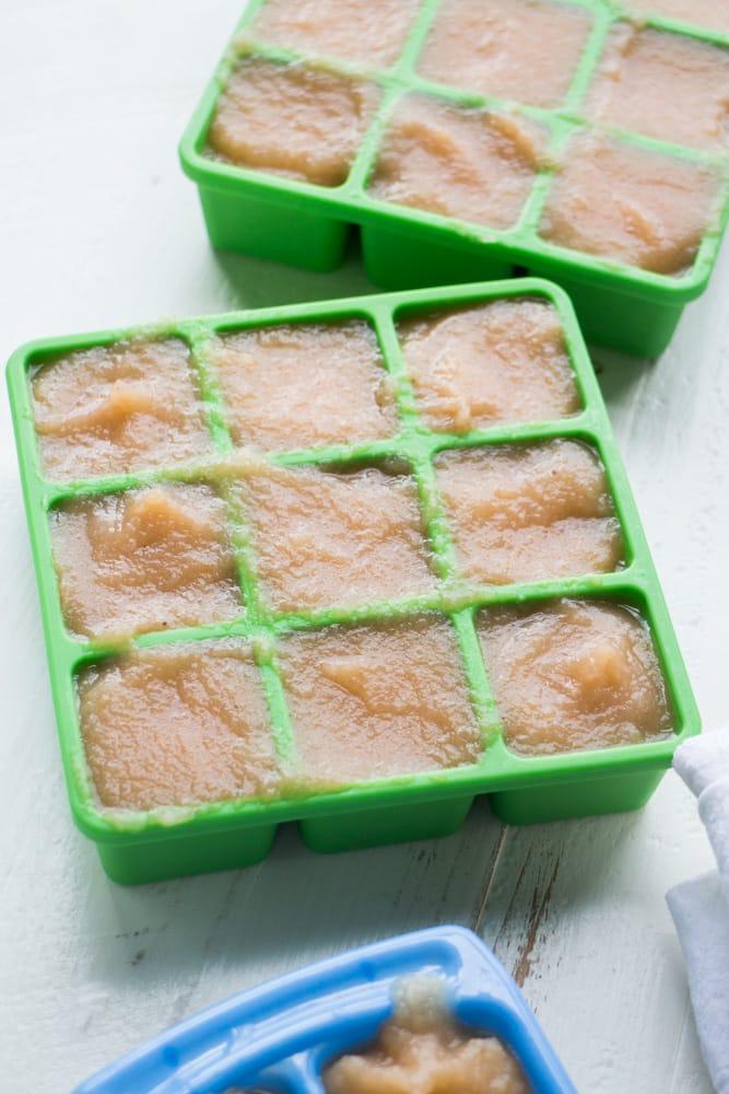 Baby Food Freezer Storage
