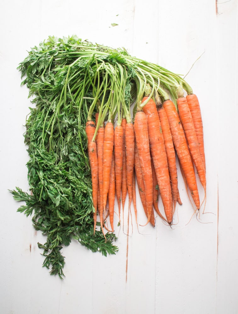 Fresh Garden Carrots with Green Tops