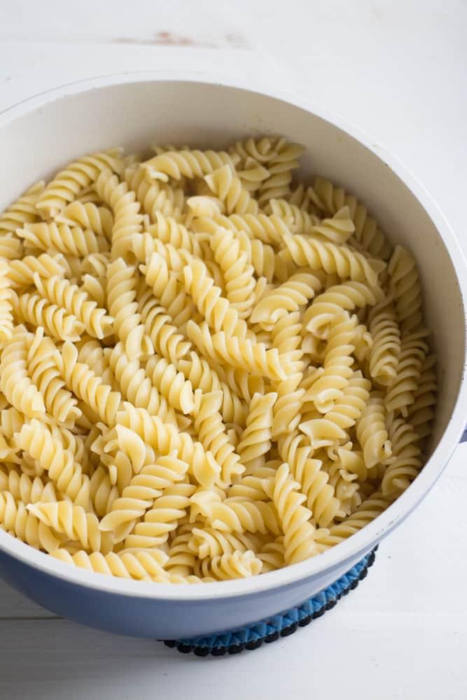 cooked rotini pasta