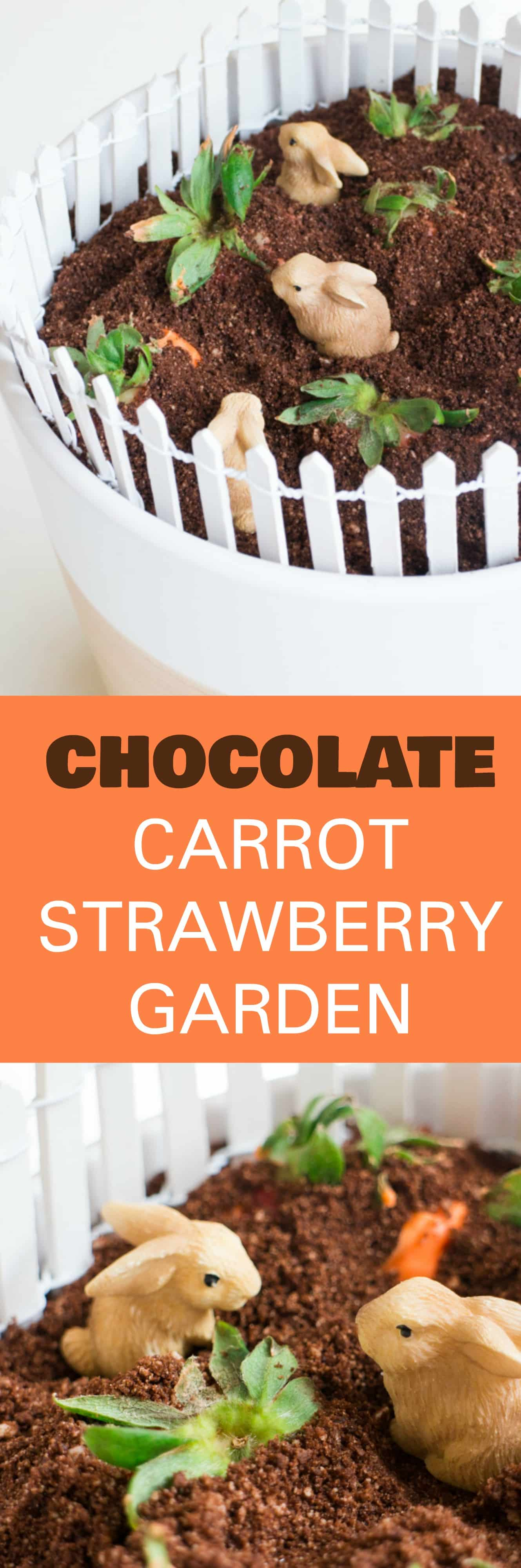 EDIBLE Chocolate Carrot Strawberry GARDEN is the perfect DIY Mother's day dessert craft from kids! This simple craft uses chocolate cookies for dirt and chocolate covered strawberries for carrots! Great for toddlers,  preschoolers and older children to make for Mothers and Grandmas who love to garden!