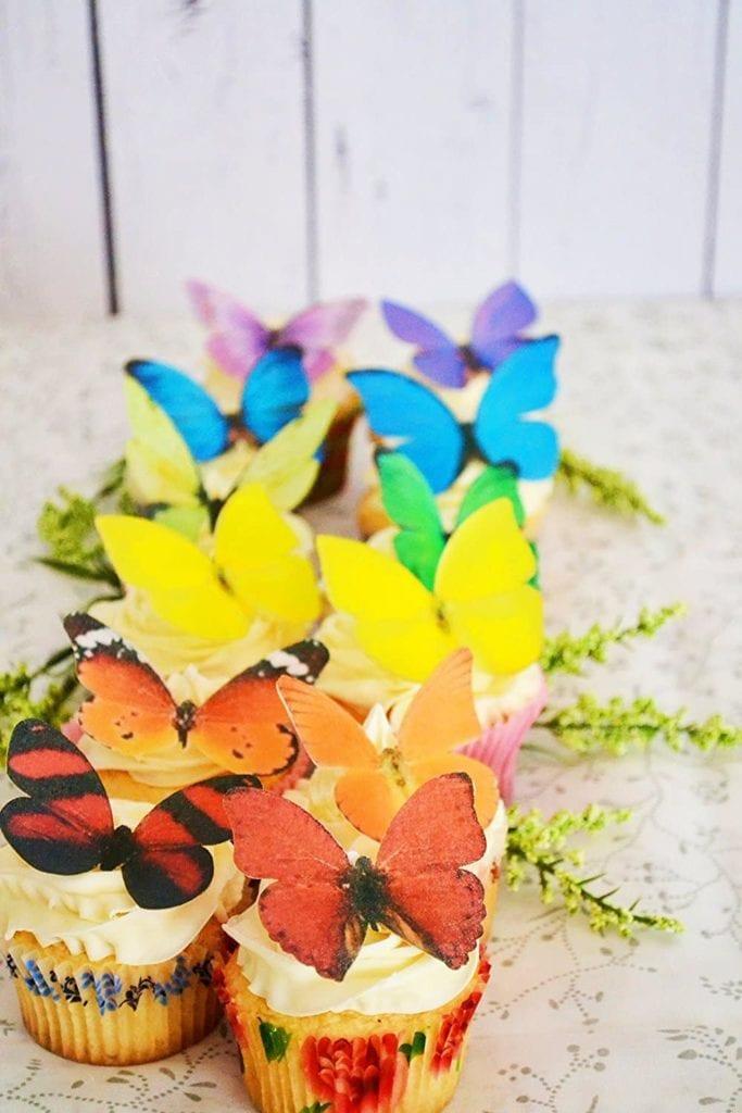 Rainbow Butterfly Cupcakes
