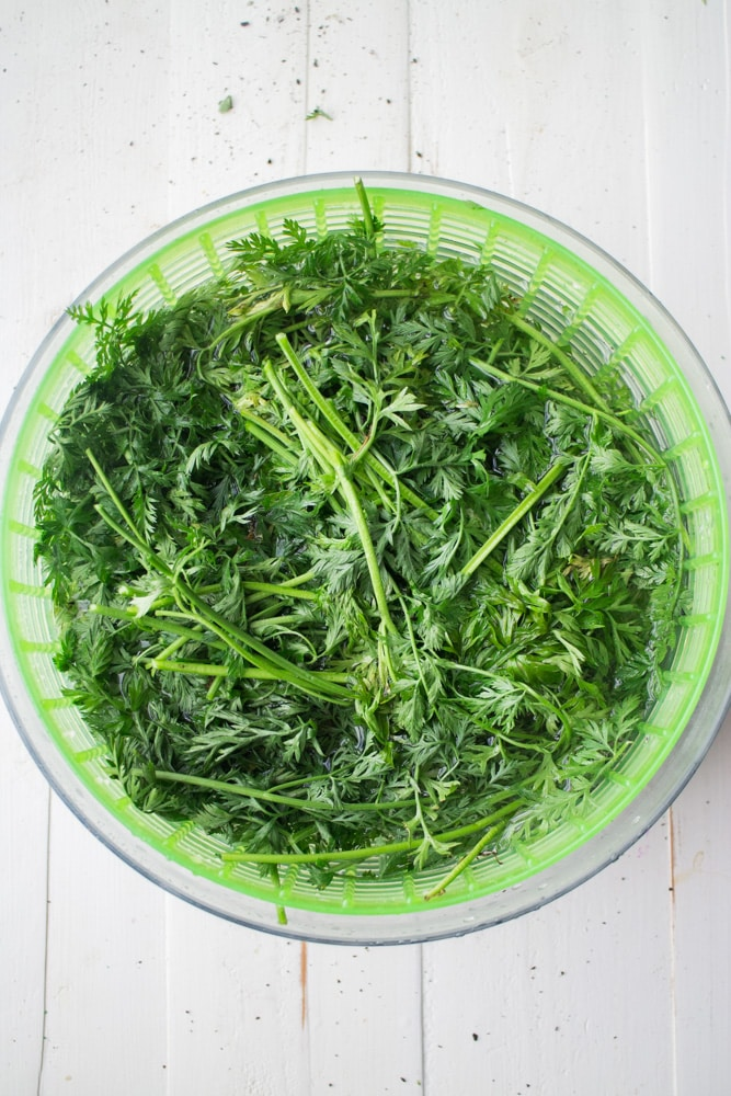 Carrot Greens Recipe
