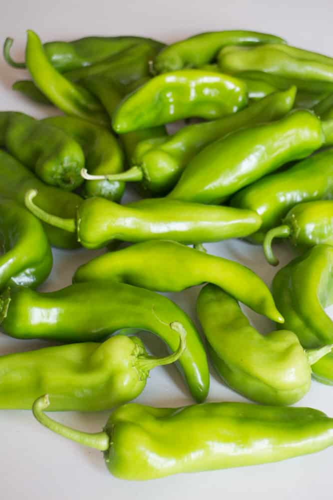 Anaheim Peppers from Johnny Seeds