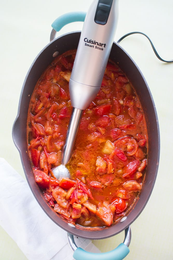 Immersion Blender for Tomato Sauce