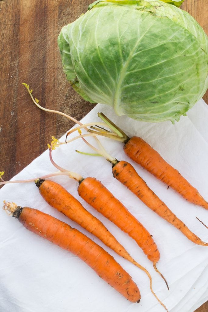 cabbage and carrots on cutting board