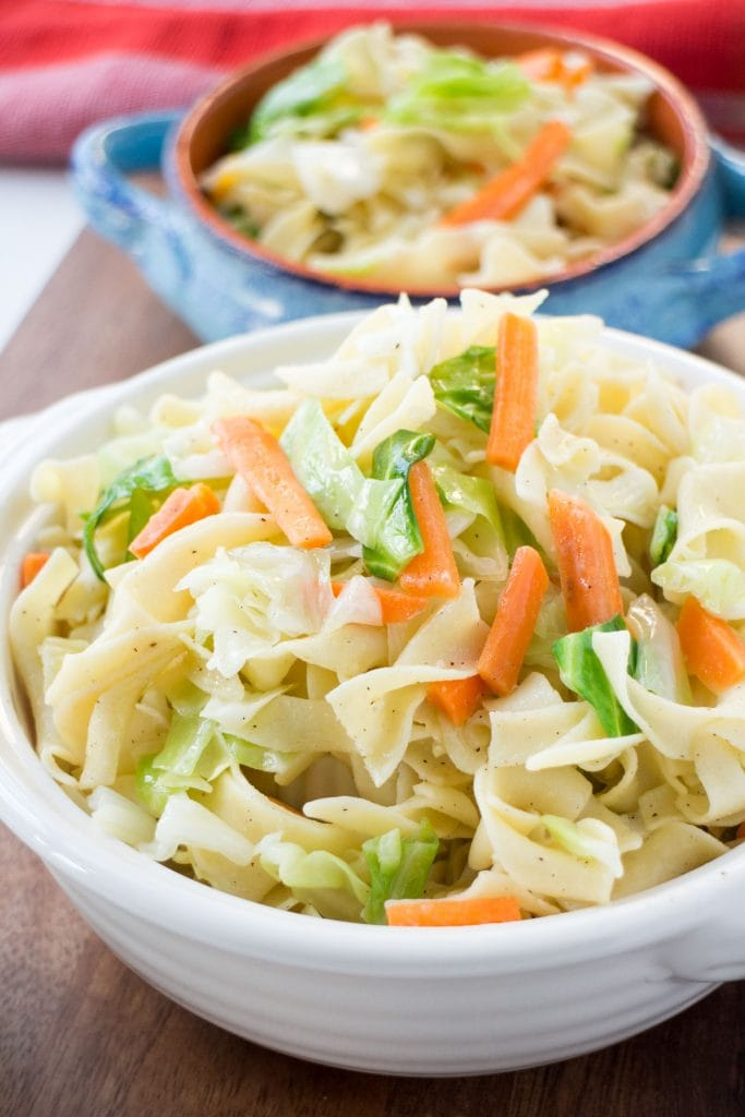 cabbage and noodles in white and blue bowl on table