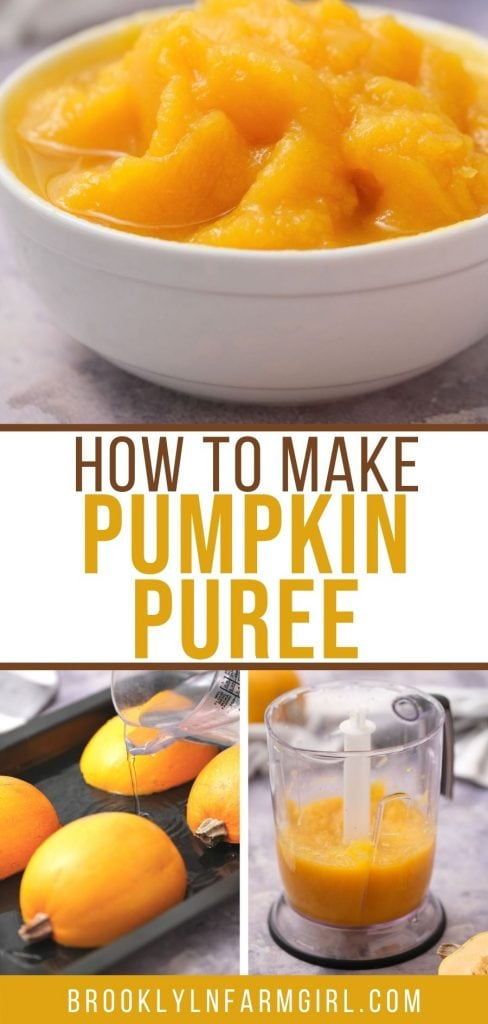 EASY step-by-step instructions on how to make pumpkin puree from fresh pumpkins! You can use any type of pumpkin to make homemade puree using a food processor or food strainer.