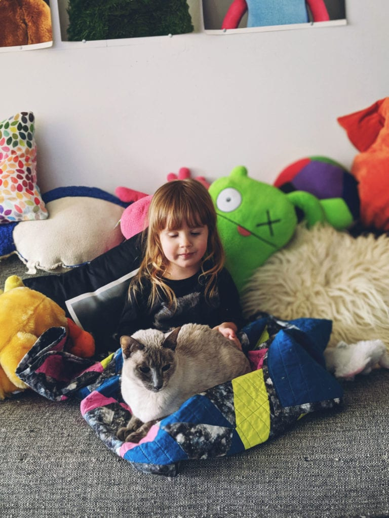 Toddler and cat on couch