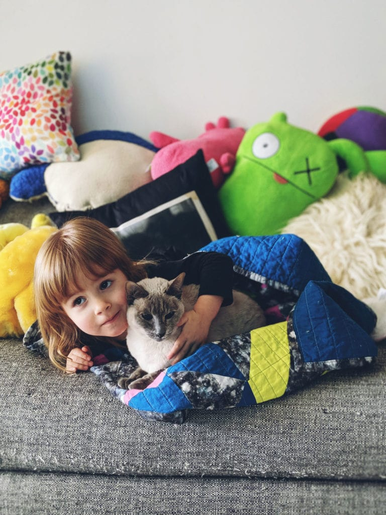 Toddler and Siamese Cat Hugging