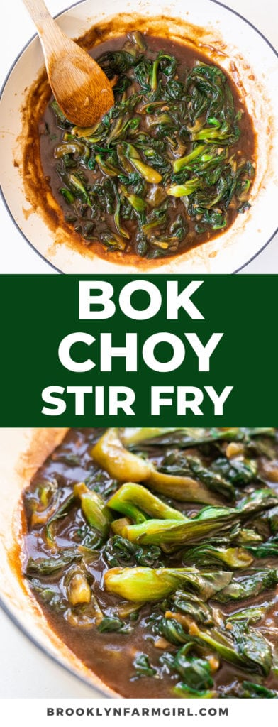 Delicious Bok Choy Stir Fry in Brown Sauce recipe, to serve over rice for a full healthy meal.  This easy Asian dish only takes 15 minutes to make and is bursting with flavor!
