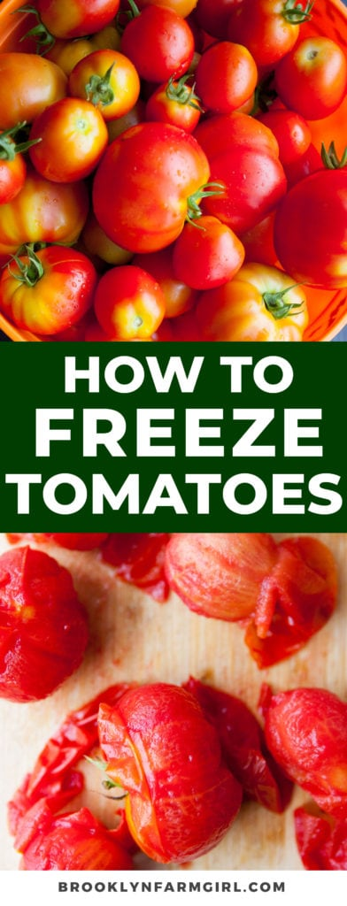 As watery as tomatoes are, they are actually great for freezing! Here are some great tips for freezing your tomatoes to use in dishes later.
