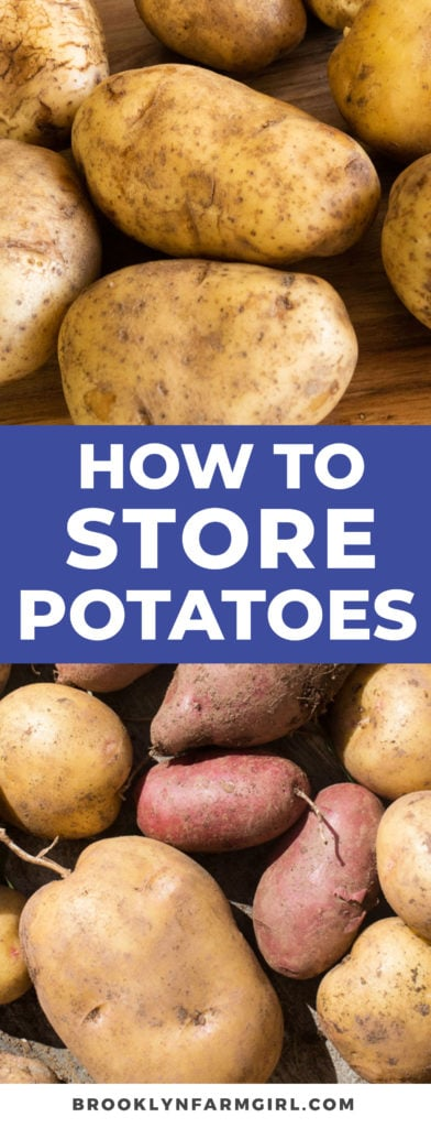 It is important to know how to store potatoes and get around all the conflicting information out there. Here are the best tips for storing your potatoes to make them last for a long time.