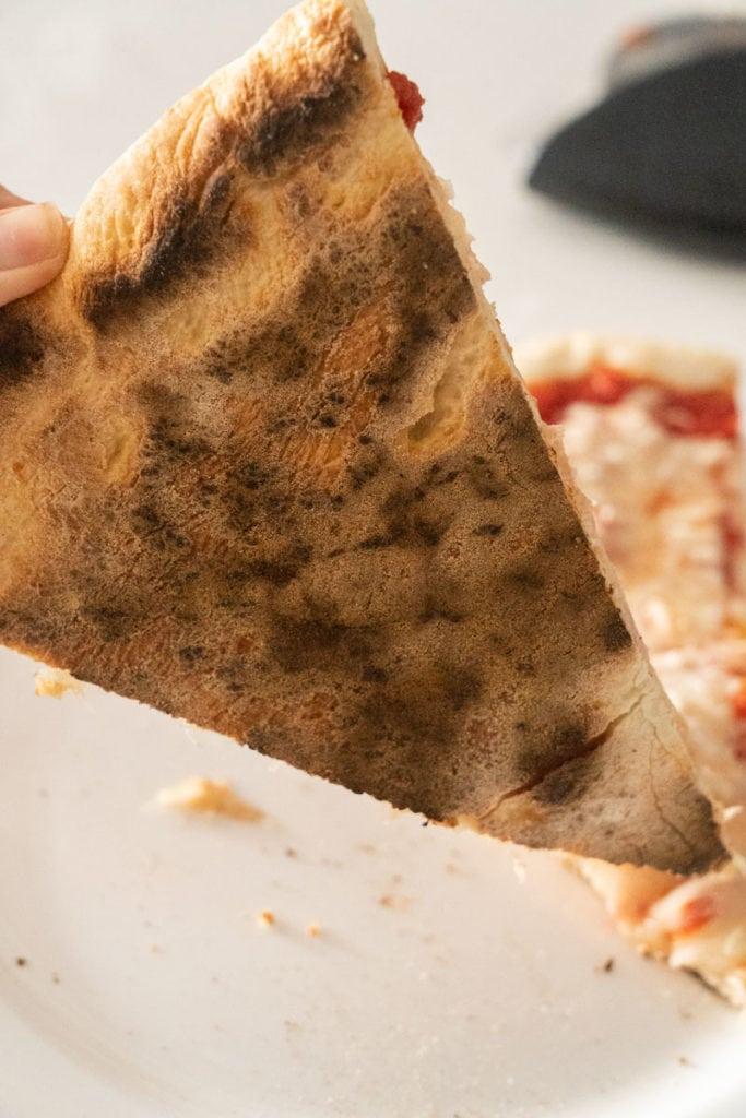 brick oven style pizza crust recipe