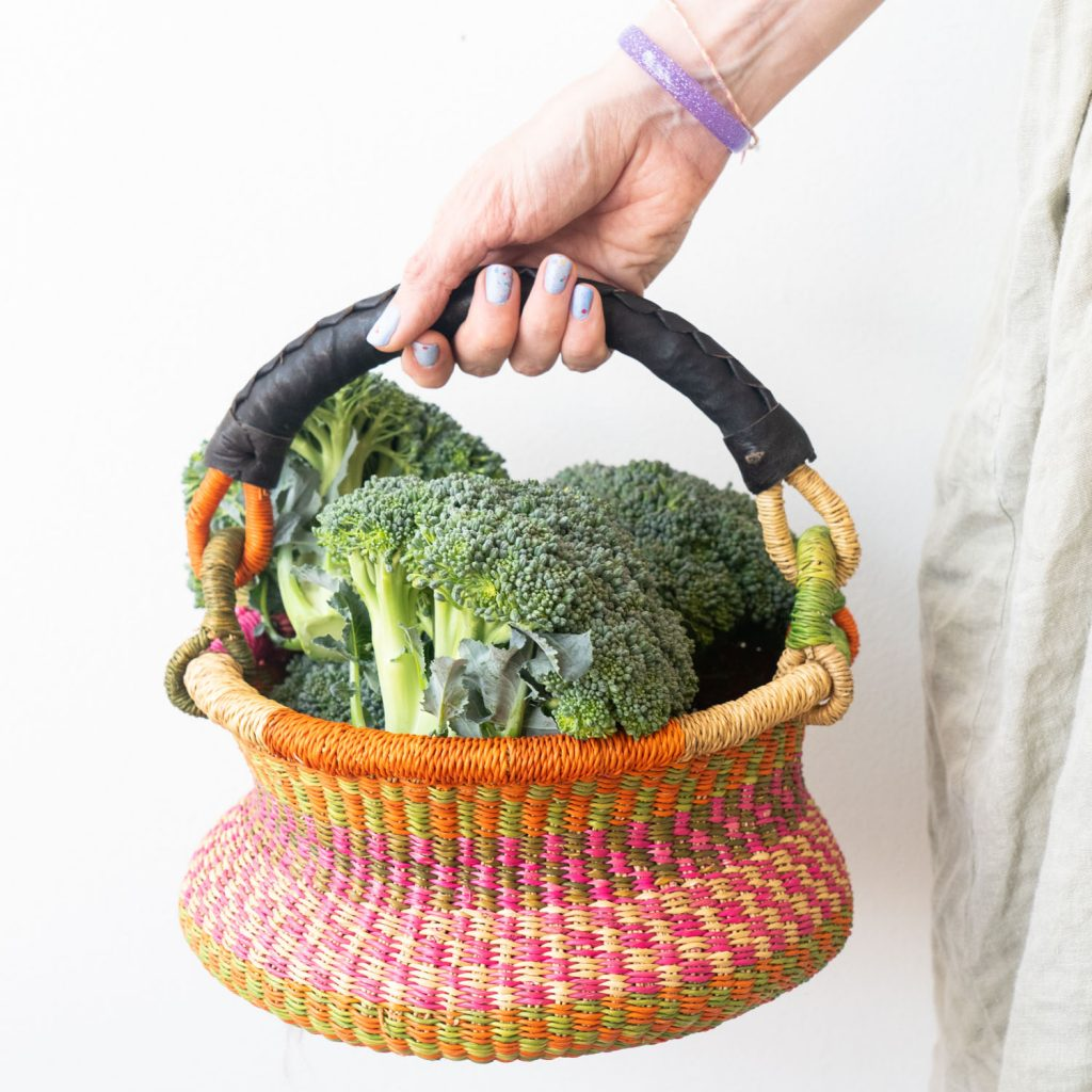 Fresh Broccoli Heads from garden in pink basket, ingredient to make Cream of Broccoli Soup.