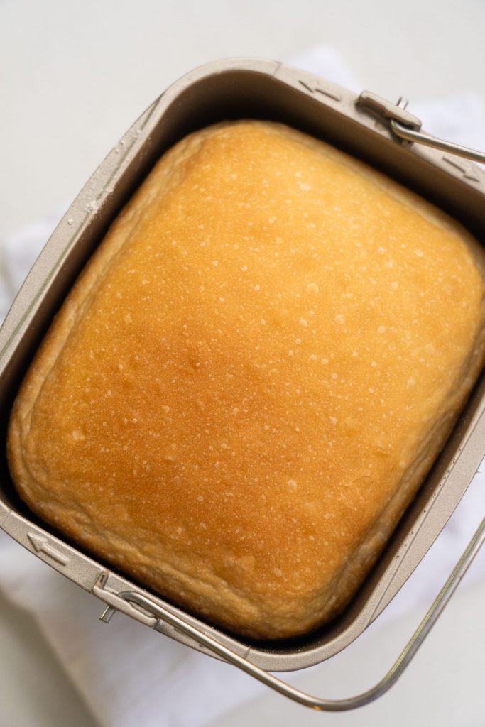 baked loaf of bread in bread machine baking pan