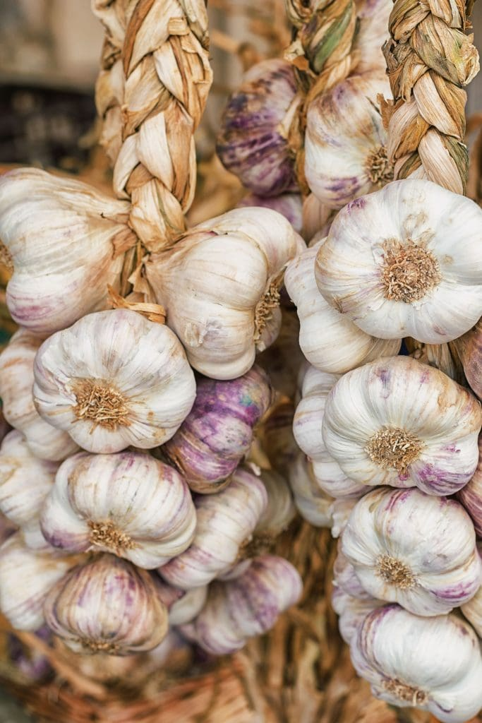 braided garlic hanging up in shed