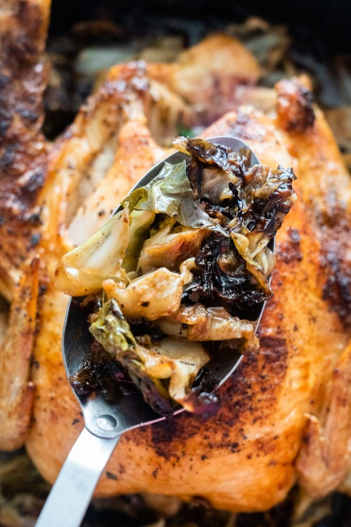 spoon of cabbage sitting on top of roasted chicken