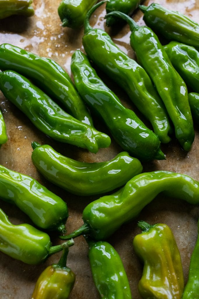 shishito peppers coated in olive oil