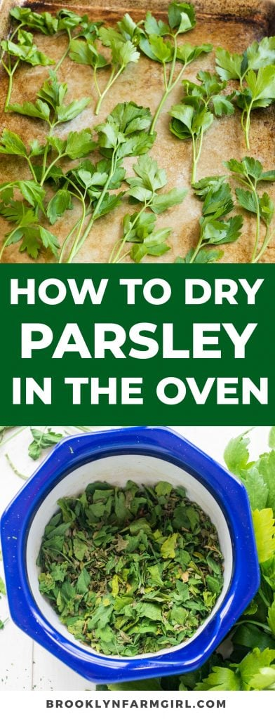 Easy way to dry parsley in the oven in 20 minutes.  Follow the step by step instructions for easy herb drying!