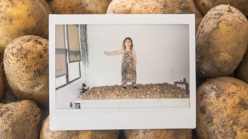 little girl standing on table filled with potatoes from the garden