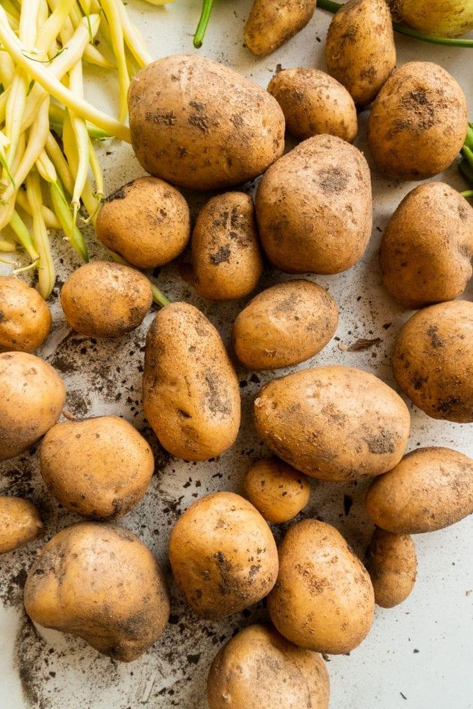 dirty potatoes on white table next to yellow beans
