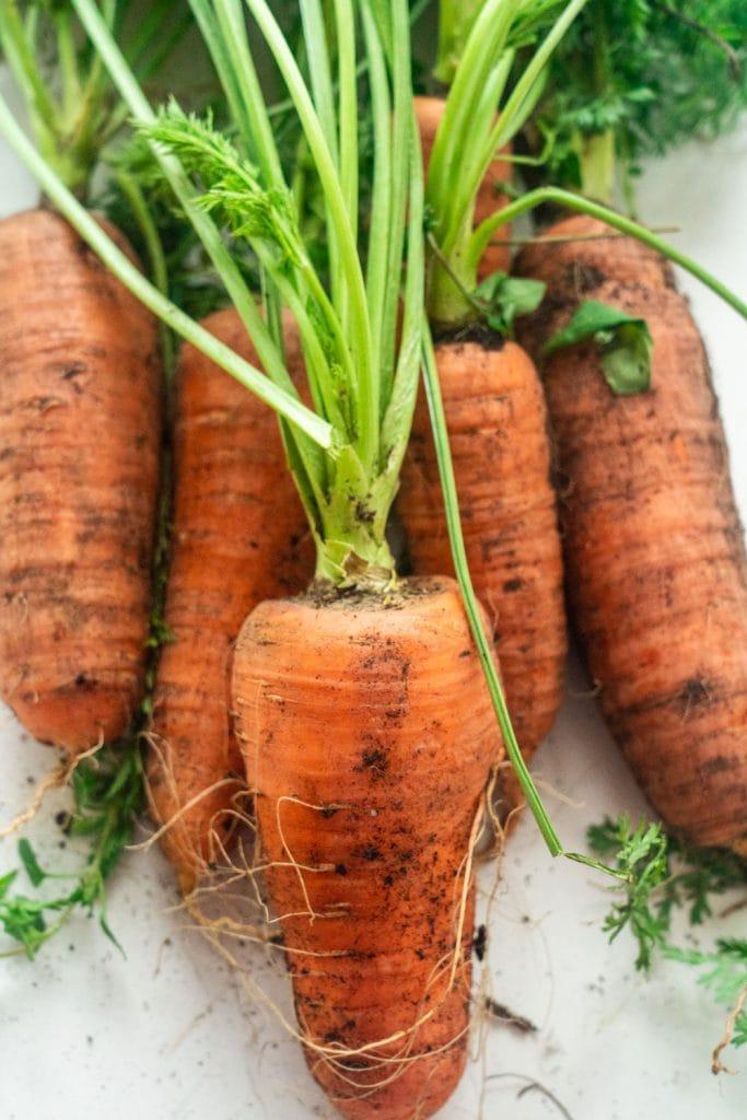 orange carrots on white table