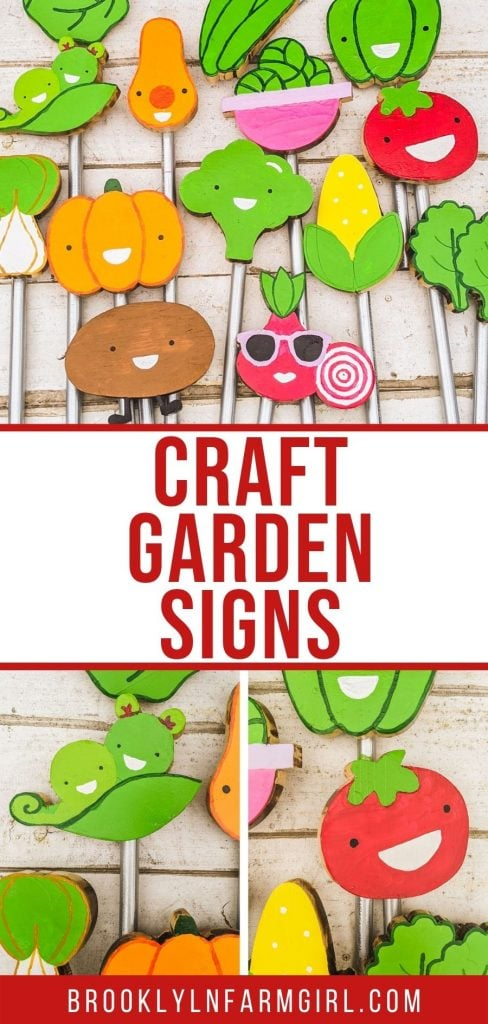 How to make cute vegetable garden signs to bring smiles to your garden. These funny garden signs are made with wood, metal stakes and colorful paint.