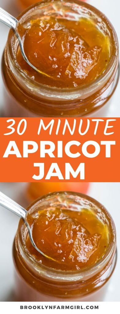 Save money and make your own homemade apricot jam in 30 minutes.  All you need is fresh apricots, sugar and lemon juice - no pectin required. Includes easy canning instructions for preservation.
