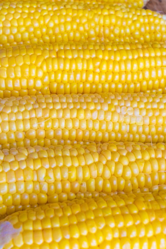 fresh cobs of corn.