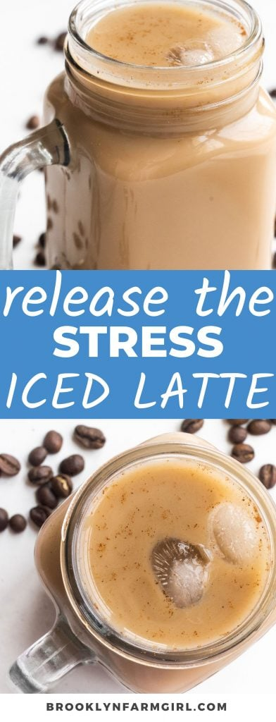 Release your stress with this iced coffee recipe that only needs 5 ingredients.  Perfect for breakfast before working, or when you need to relax.